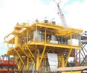 Oilbird Platform